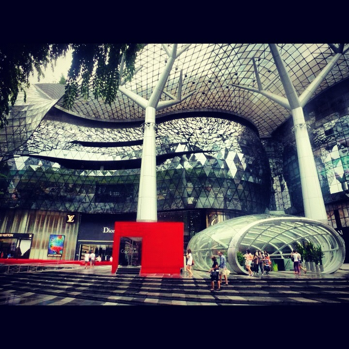 The Ion Orchard - where I can't afford to shop