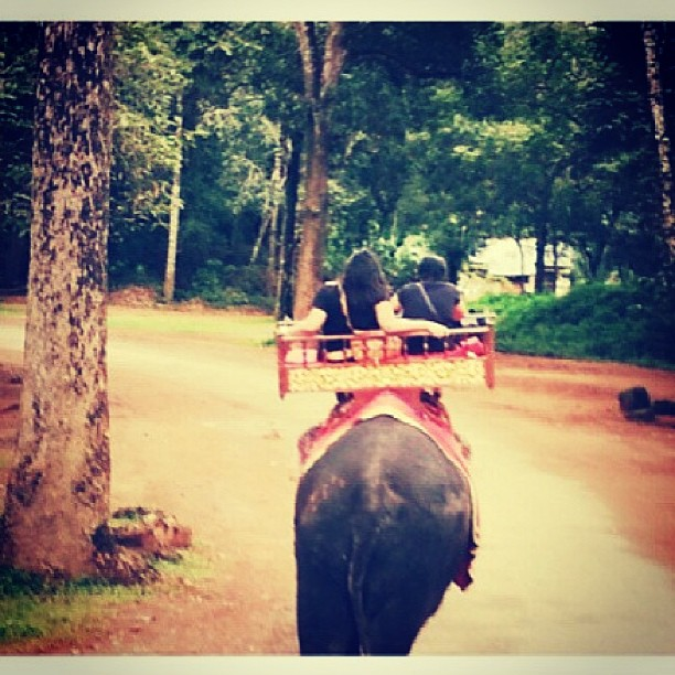 Cruising with my ride - the way to go in Siem Reap